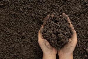 mano que sostiene el suelo negro para cultivar cultivos concepto del día mundial del suelo foto