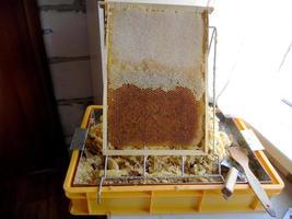 Fondo de textura hexagonal, panal de cera de una colmena de abejas foto