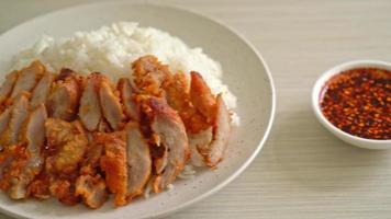 porc frit garni de riz avec trempette épicée video