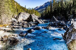 Cataract Creek. Yoho National Park. British Columbia, Canada. photo