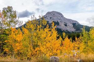Mount Baldy Pass Kananaskis Country Alberta Canada photo