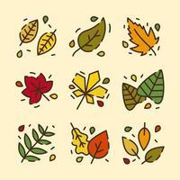 Autumn Leaves Elements vector