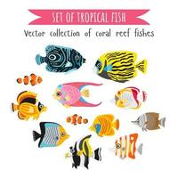 Set of corals fish in flat style. Coral reef underwater animal vector