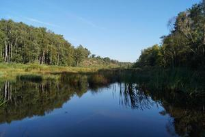 In the nature reserve Fischbeker Heide next to Hamburg Germany photo