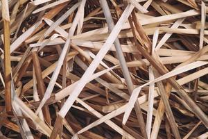Randomly arranged dry reed leaves. Withered grass background. photo