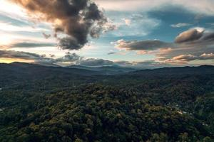mountains and green forest in the evening photo