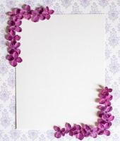Background with copy space blank on table with lilac purple flower. photo