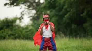 Hero Man in Red with Crown Standing and Punching video