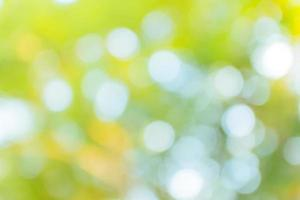 fondo verde bokeh. foto