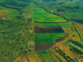 from bird eye view of fields with crops and trees in rural side photo