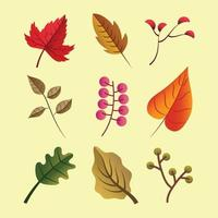 Autumn Leaves Icon Template Set vector