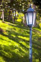 árboles de temporada y lámparas verde naturaleza en el parque foto
