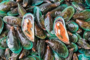 Fresh mussels at the market photo