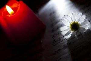 Flower Daisy Music Notes and Candle photo