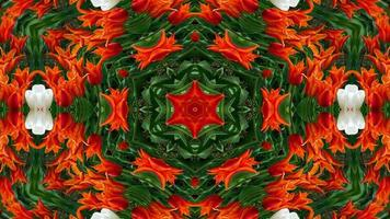Flowers Flora Kaleidoscope photo