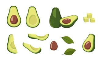 Avocado icons set. green food, half, slices, with a large seed. vector