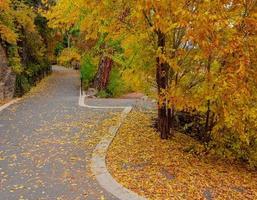 October along the Deschutes River Columbia Park Bend OR photo