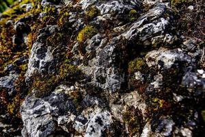 2021 05 15 Cortina roca y musgo foto