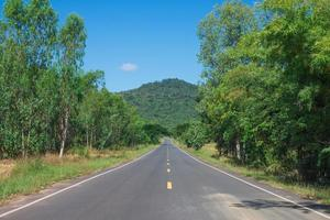 Country Road With Trees Beside in rural area. Nature and green. photo