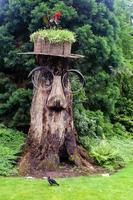 brown tree cutout outdoor decor photo
