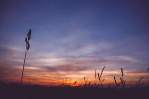puesta de sol cielo nubes foto