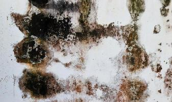 Texture old white plaster wall for vintage background photo