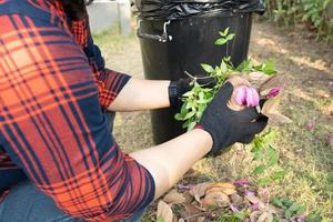 Asian woman clean and collecting bin dry leaves garbage photo