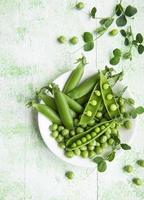 vainas de guisantes verdes frescos y guisantes verdes con brotes foto