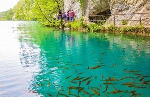 turistas en el parque nacional de los lagos de plitvice en croacia foto