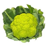 Cauliflower isolated over white photo