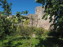 Chepstow Castle ruins in Chepstow photo