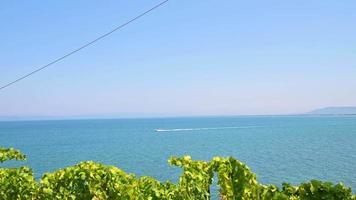 Meereslandschaft mit Motorboot in Bewegung video