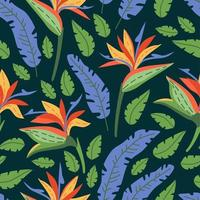 Seamless floral pattern with tropical flowers on dark background vector