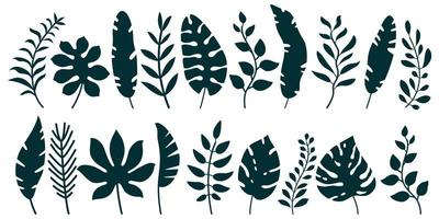 Set of black silhouettes of tropical leaves vector