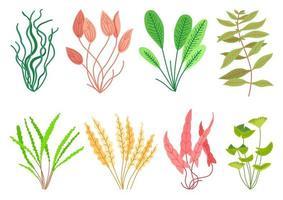 Cute cartoon aquarium plants set. Wildlife nature vector