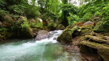 flodbäck och vattenfall i sträckan efter video