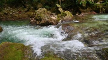 ruisseau de rivière et cascades dans le tronçon après video