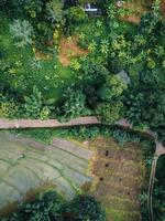 el camino a la granja y los campos foto