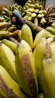 la foto es una foto de un plátano. fotos de banano fresco