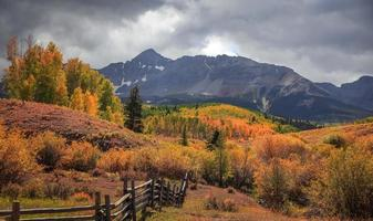 Fall foliage near Wilson peak in Colorado San Juan mountains photo
