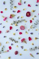 vista superior surtido de flores preciosas foto