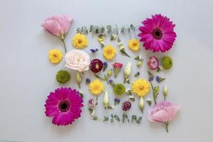 Flat lay gorgeous flowers composition photo