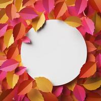 Autumn leaves arrangement with copy space photo