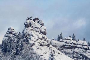 árboles de las montañas cubiertos de nieve. los árboles están congelados foto