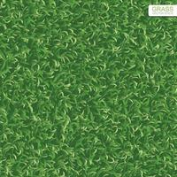 Green lawn grass texture for background. Vector. vector