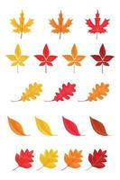 Autumn leaves or fall foliage icons isolated on white background vector
