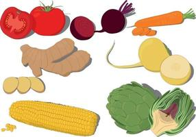 Whole and cut fresh vegetables collection vector illustration