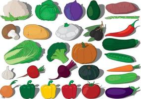 Vegetables collection vector illustration