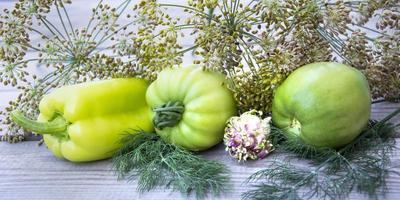 pimiento, tomate verde y eneldo se encuentran en una fila sobre un fondo de madera foto