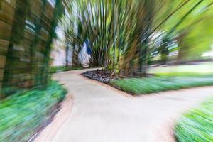 Pasarela de desenfoque abstracto en el jardín de bambú foto